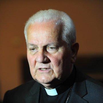 Davidova majka traži utočište kod biskupa Komarice