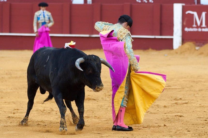 Raspudić o koridi u HDZ-u: Plenković želi dokrajčiti Brkića kao matador ranjenog bika