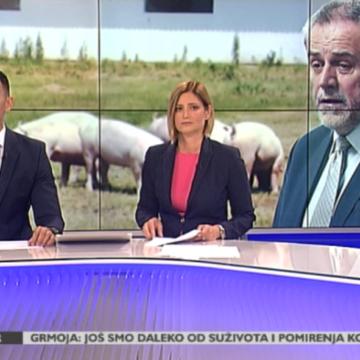 Životinjska farma u srcu metropole: Bandić opet odgodio odluku o držanju svinja i krava u Zagrebu