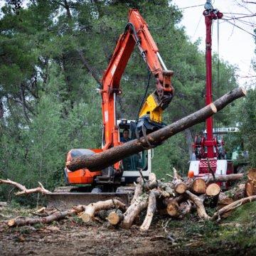 Split ostaje bez šume na Marjanu: Priprema se terena za apartmanizaciju i betonizaciju?