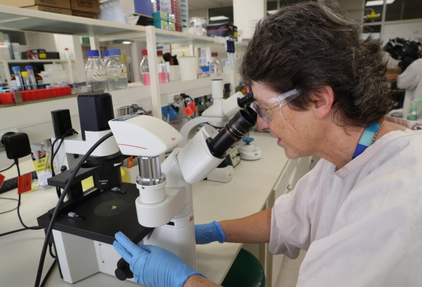 """Preosjetljivi testovi na koronu: Sve više znanstvenika govori o """"lažno pozitivnim rezultatima"""""""